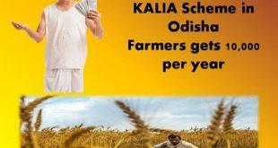kalia scheme odisha