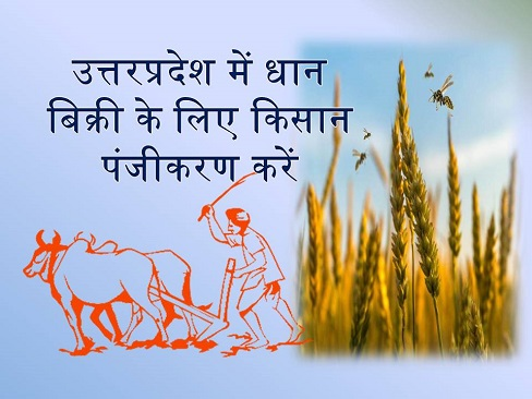 UP Kisan Registration Online Form for Farmers to Sell Paddy of