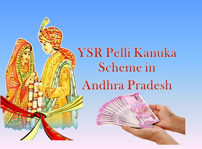YSR-Pelli-Kanuka-Scheme-in-AP