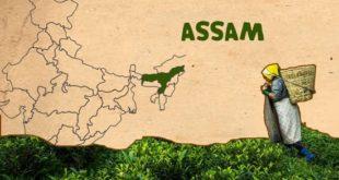 Asom Darshan scheme assam