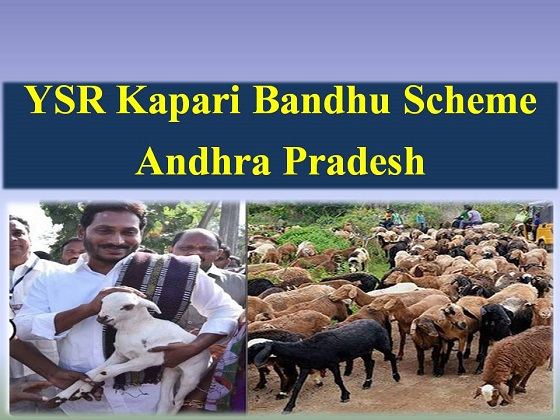 YSR Kapari Bandhu Scheme in Andhra Pradesh